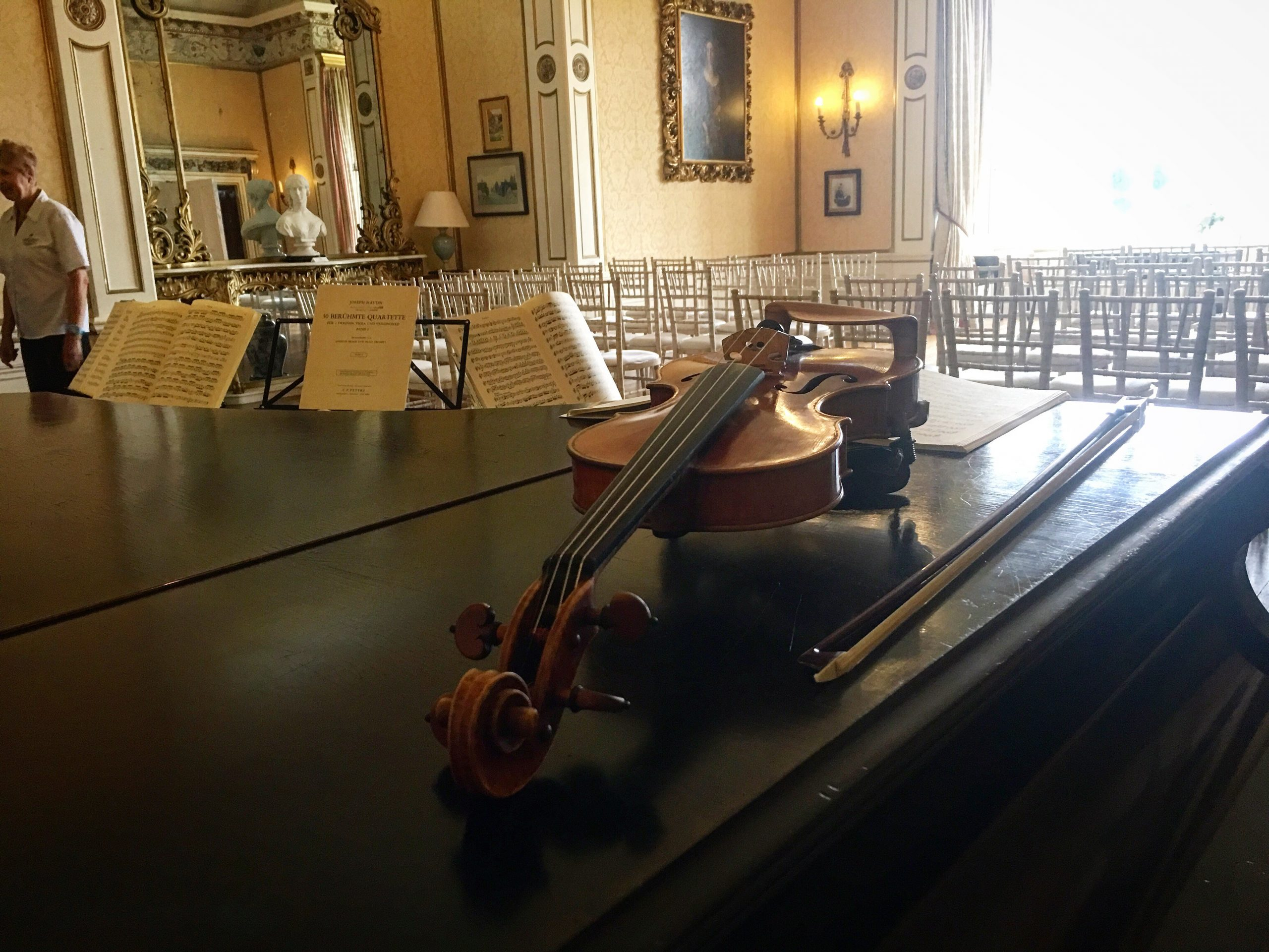 Solo Wedding Violin - Arley Hall